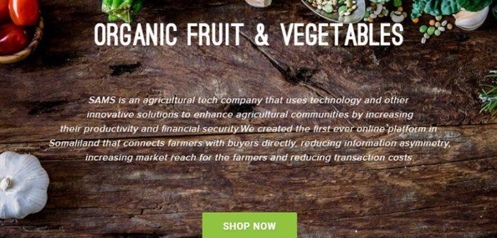 Meet SAMS, Somalia's first marketplace for farm goods