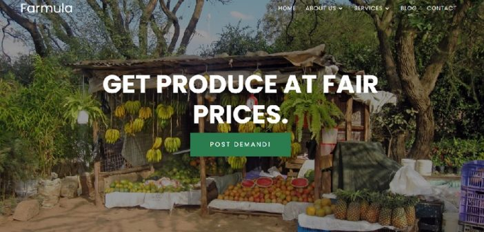 How Nigeria's Farmula is building the infrastructure connecting food producers to retailers